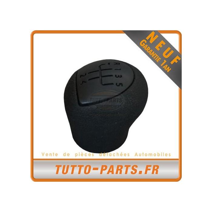 Pommeau Levier de Vitesse pour RENAULT Clio II Kangoo